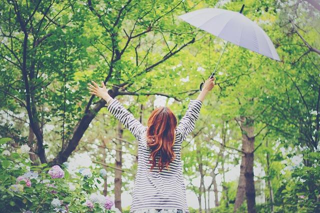 umbrellaーstorage